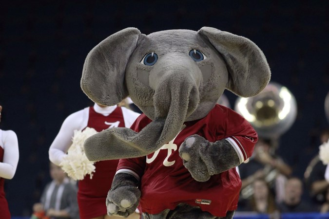 4a9e2d2bbf7bb The Elephant Story - University of Alabama Athletics